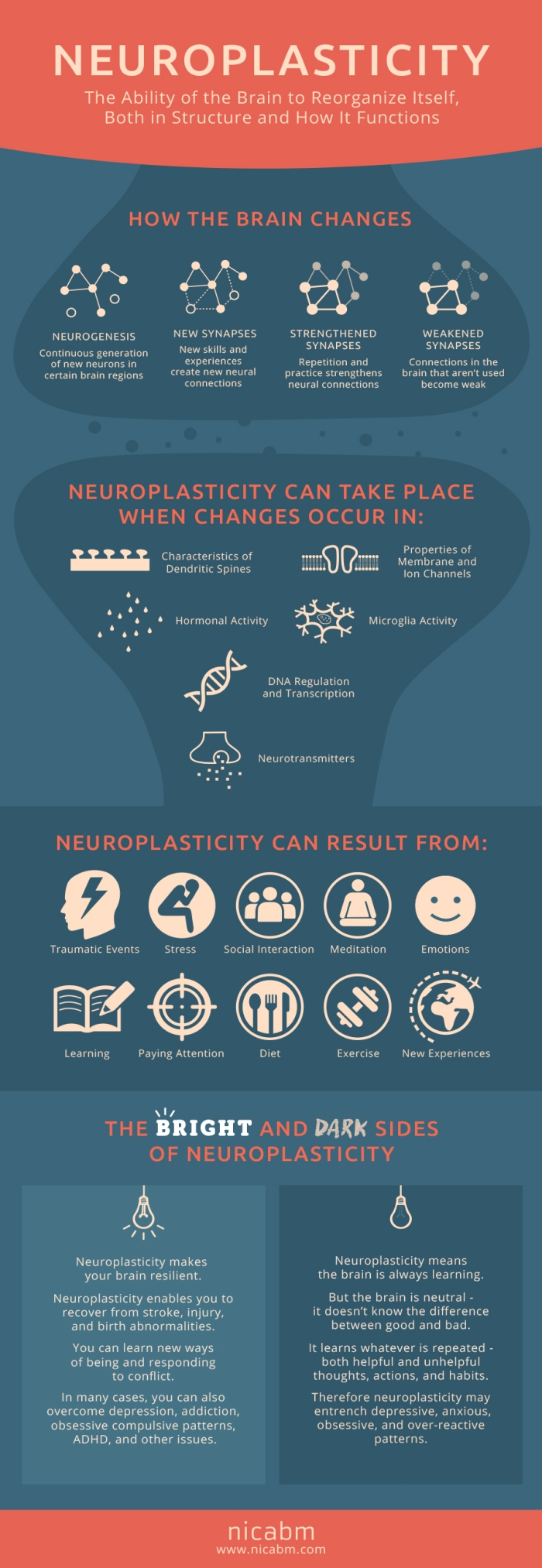 neuroplasticity-infographics-revised-900720